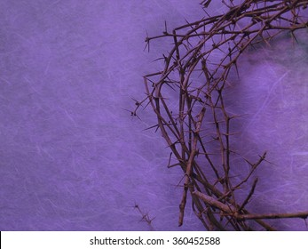 half crown of thorns on purple background with negative space on the left side