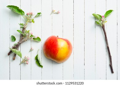 half cut apple with blossom branch on white wood table background