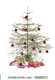 Half dead christmas tree isolated on a white background