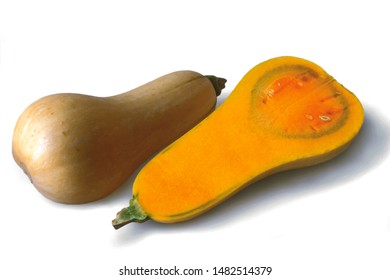 Half dissected of Cucurbita moschata or Butternut on white background