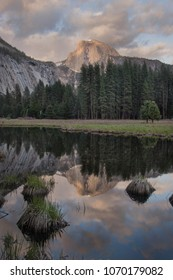Half Dome, Yosemite National park's reflection in a pond