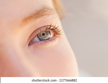 Half face section beauty portrait of teenager young woman looking ahead with blue eyes, beautiful outdoors. Golden blond female, purity innocence, dreamy lifestyle. Eye sight vision senses.