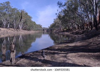 an half full murrumbidgee river with tree reflections on still water and eucalyptus trees on the banks of the river on a sunny day with clouds in the sky