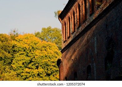 Half of the image is an autumn forest with yellow leaves, the other half is a dilapidated abandoned red brick fortification building.