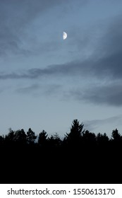 half moon directly above black forest silhouette over european woodland in november
