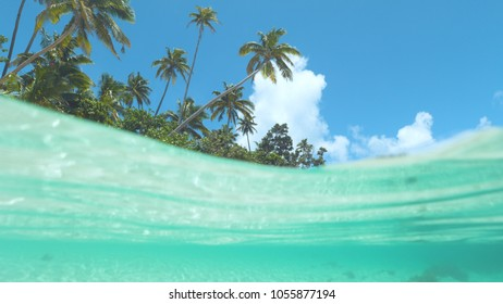 HALF IN HALF OUT: Incredibly beautiful tropical beach is swept by emerald ocean waves on an incredible sunny day in Fiji. Clear blue skies and amazing palm trees stretch over the perfect blue sea .