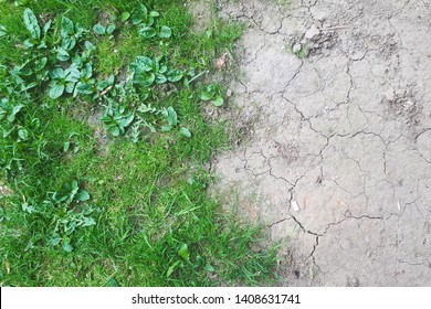 Half photo is green grass and half is dry ground
