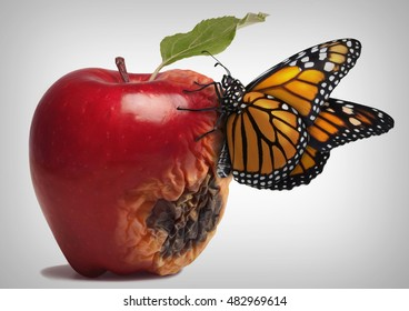 An half rotten apple with a butterfly on it (photoshop)