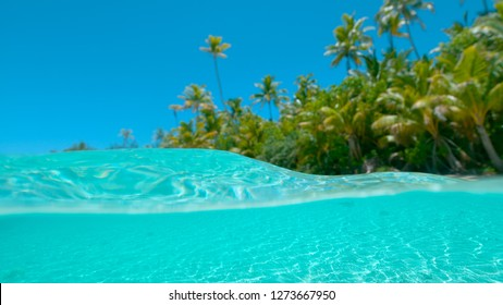HALF UNDERWATER, DOF Spectacular jewel colored water and the untouched white sand tropical beach under the sunny sky. Idyllic exotic island in the Pacific is surrounded by the tranquil turquoise water