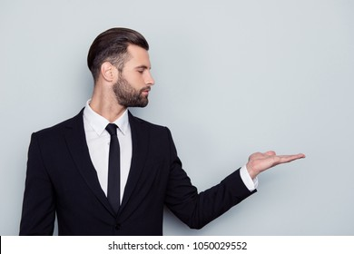 Half-faced serious confident satisfies smart modern stylish handsome concentrated expert financier banker broker representative holding empty blank place space on over hand isolated on gray background