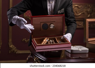 Half-length portrait of handsome young man wearing classic costume and white gloves standing at the expensive wooden table showing us the box of his favorite Cuban cigars