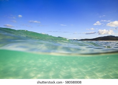 Half-submerged in clean transparent green salt water of coral sea at white silica Whitehaven beach on Whitsunday island of Great Barrier Reef, Australia.