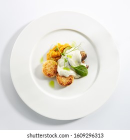 Halibut cutlets or fish cakes with cream cheese on white restaurant plate isolated. Homemade golden fried seafood meatballs, breaded flatfish fillet in breadcrumbs with white sauce and herbs topview