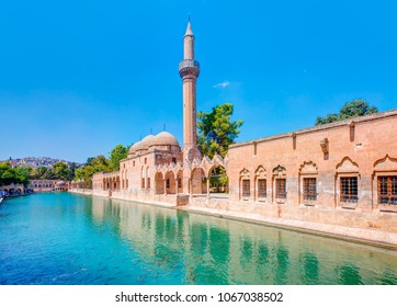 Halil-ur Rahman Mosque and Holy lake with sacred fish in Golbasi Park - Urfa, Turkey