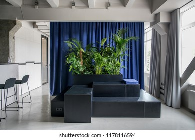 Hall in an office in a loft style with gray walls and a glossy floor. There are wooden black stands with lockers and green plants and a blue pillow, windows, multicolor curtains, chairs, glass door.