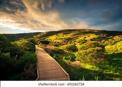 Hallett Cove park landscape at sunset, South Australia