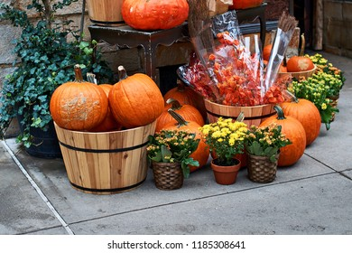 Halloween arrangement in front of the street shop in New York with beautiful orange pumpkins, physalis alkekengi or bladder cherry or Chinese lanterns, yellow mums and other decorations
