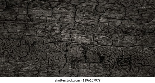 Halloween background with Burnt wooden Board texture. Burned scratched hardwood surface. Smoking wood plank background.