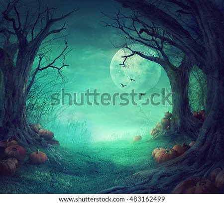 halloween background spooky forest dead trees の写真素材 今すぐ