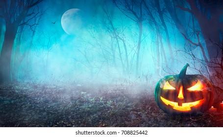 Halloween-Hintergrund. Lecker Kürbis mit Mond und dunklem Wald. Halloween-Design mit Kopienraum