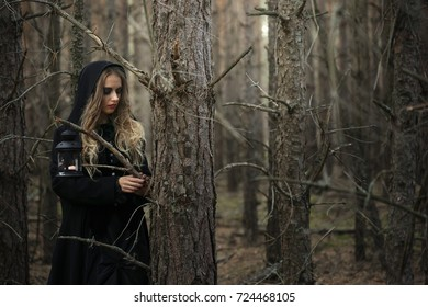 Halloween. beautiful witch girl in a black dress in the forest