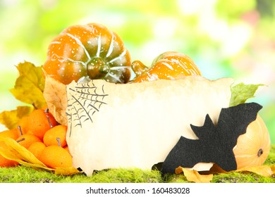 Halloween composition on nature background