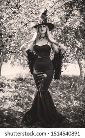 Halloween concept, elegant witch in black dress and hat, costume and ideas on a holidays