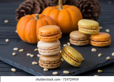 Halloween dessert. Thanksgiving menu. French macarons. Chocolate and pumpkin macaroons with pine nuts on the black background.