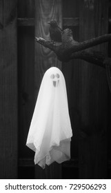 Halloween ghost floating in front of a darkened fence with a black crow over head in black and white.