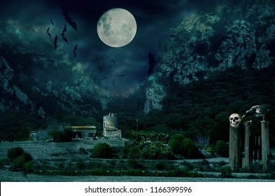 Halloween house with Moon and bats.Sinister scene by night, with dark scary horror atmosphere.  Photo manipulation.