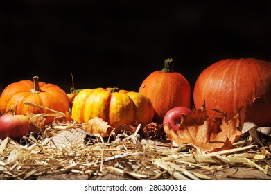 Halloween - many different pumpkins on straw in front of brown background with copyspace