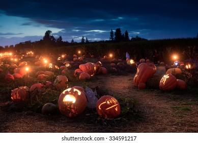 A Halloween path wends it's way through hundreds of lit jack-o-lanterns