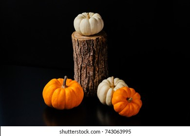 Halloween PROP and Decor Wood log with Black Background