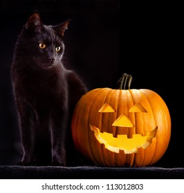 Halloween pumpkin and black cat scary spooky and creepy horror holiday superstition evil animal and jack lantern