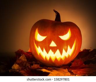 Halloween pumpkin with leafs on orange background