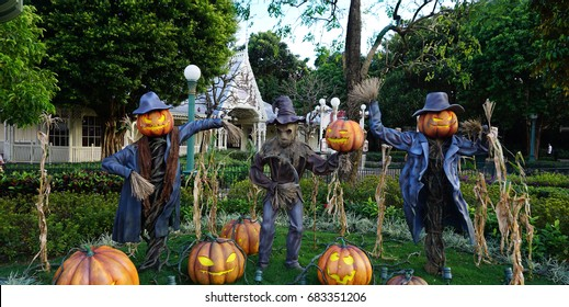 Halloween pumpkin scarecrows smile and scary eyes at Public Park, theme set for holiday