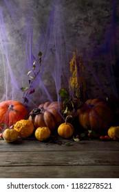 Halloween pumpkin and spiderweb