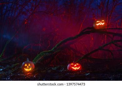 Halloween pumpkins in night forest