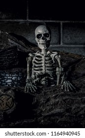 Halloween Skeleton in Fireplace with Burnt Logs - Portrait