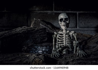 Halloween Skeleton in Fireplace with Burnt Logs