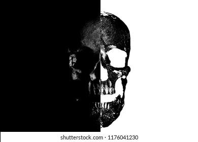 Halloween Skull Art. Black and White Skull. Human Skull Art. Photo Illustration.