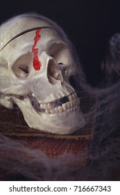 Halloween - skull with blood and spider web