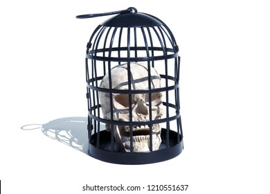 Halloween Skull in a Metal Torture Bird Cage. Isolated on white. Room for text. Medieval Torture Device with a Human Skull inside.