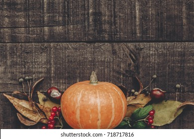 halloween  or thanksgiving concept greeting card flat lay. beautiful pumpkin with leaves and berries on rustic wooden background, top view. space for text. cozy autumn mood. fall holiday