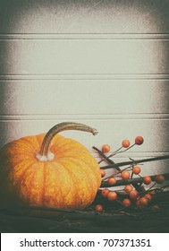 Halloween or Thanksgiving Vertical Invite Card in Dark, Moody Grunge Tones with blank room or space above for copy, text or words.  It has mini pumpkin, orange berries and brown hues with vignette