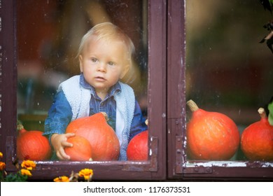 Halloween theme picture of cute cheerful kid looking on the window. Beautiful toddler boy in the house decorated to Halloween