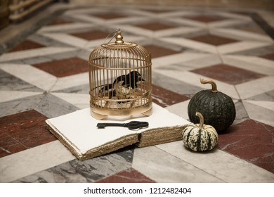Halloween vintage royal decorations