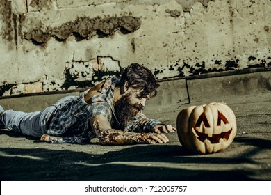 Halloween zombie hipster with red blood on paving asphalt. War soldier with bloody wounds. Vampire in torn clothes on grunge background. Halloween holiday celebration concept. Man crawling to pumpkin.