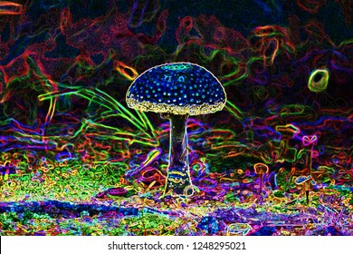 Hallucinogenic mushroom close up with acid special effects