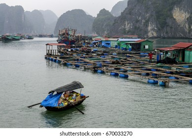 HALONG BAY, VIETNAM – DECEMBER 2012: Floating grocery offering goods to the tourists on the cruise ships in Halong Bay